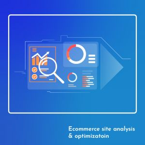 We will help you to analyse, optimise and grow your Ecommerce